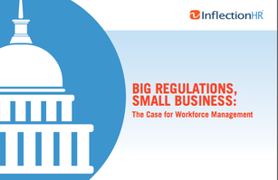Big Regulations Small Business